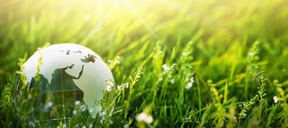 5 Giugno 2021: Giornata Mondiale dell'Ambiente