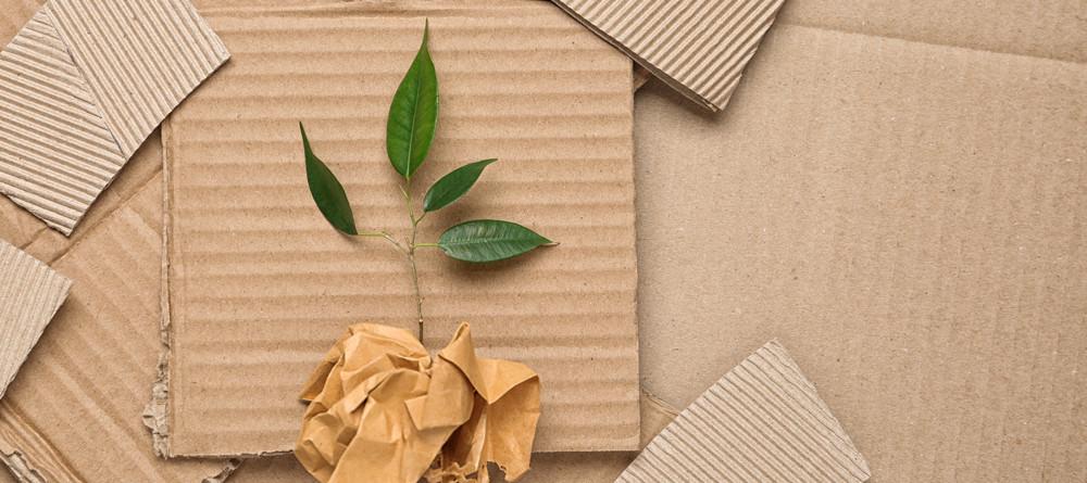 Le scatole in cartone riciclato di Econviene rispettano l'ambiente